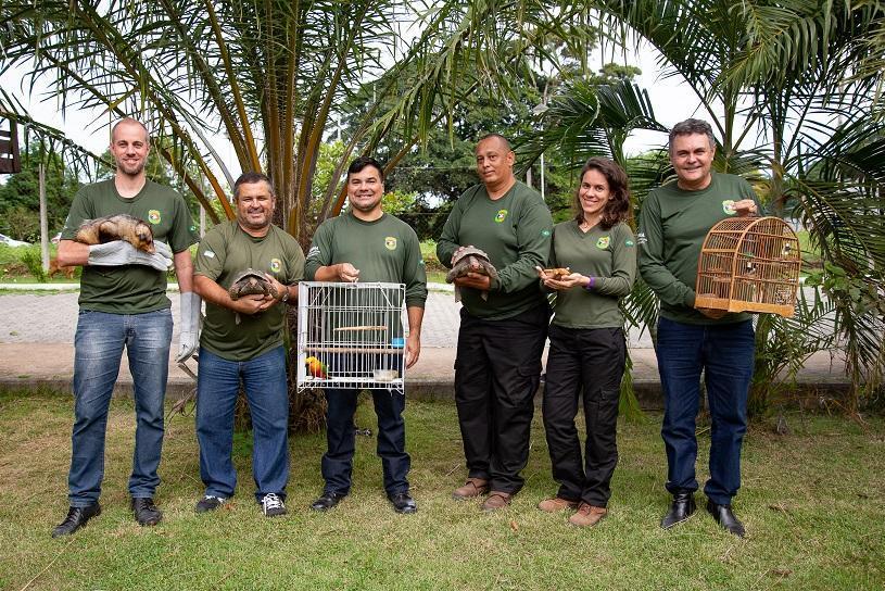 Prefeitura registra recorde de resgate de animais silvestres em 2020