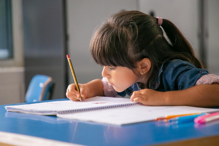 Serra vai distribuir 110 mil cadernos pedagógicos a estudantes da rede municipal