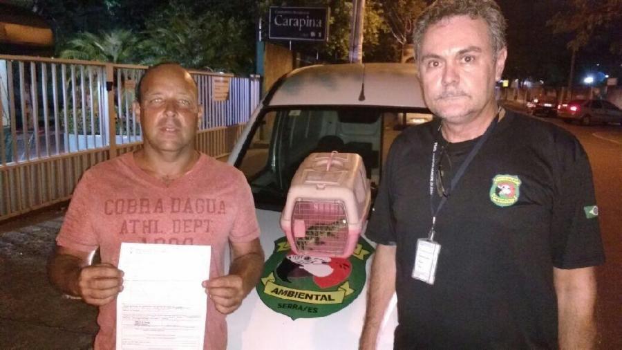 Fiscalização recolhe filhote de jacaré em Morada de Laranjeiras