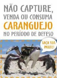 Proibida venda de caranguejo a partir do dia 27