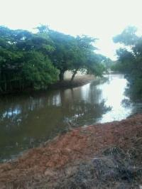 Secretaria de Serviços realiza limpeza em rios, córregos e canais